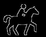 Passeggiate a cavallo